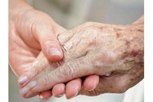 Папа Франциск наказав припинити практику евтаназії в лікарнях чернечого інституту в Бельгії