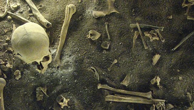 Археологи знайшли скелети, які стали підтвердженням страшного стародавнього ритуалу