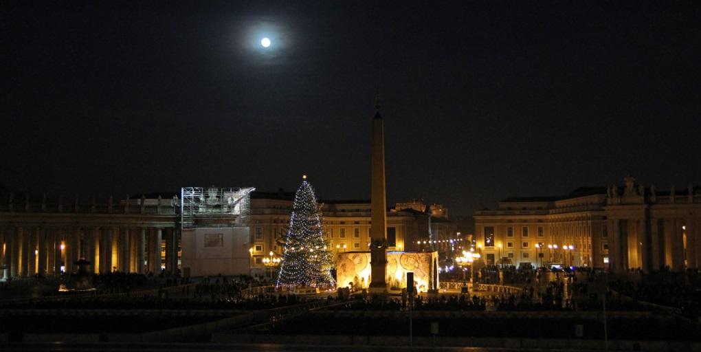 Різдвяна ялинка у Ватикані цьогоріч буде доставлена з Польщі